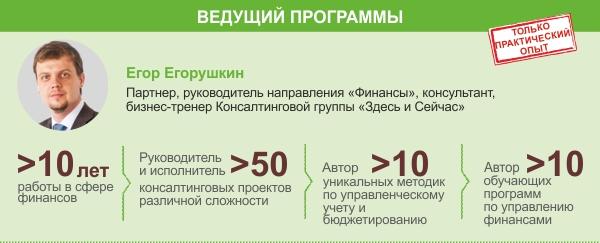 fin_dlya_nefin2